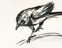 Artelier13-paintings-figurative-raven-Dagmar-Kuechler-Erfurt-0010